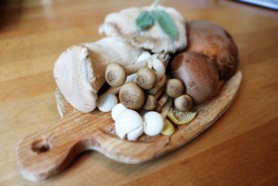 Variety Of Medicinal Mushrooms
